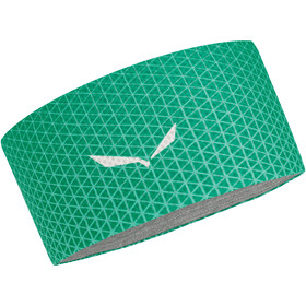 Salewa Pedroc Dry Lite Headband Greenlake